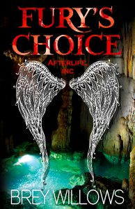 'Fury's Choice' by Brey Willows image