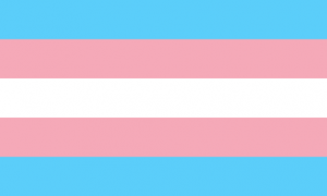 We Will Not Be Erased! Support Trans Storytellers! image