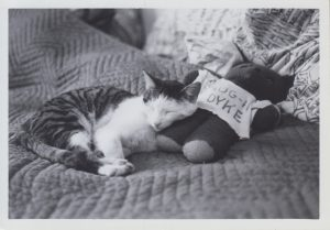 Literary Cats, Queer Children's Books, and More Archival News image