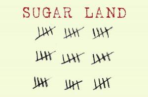 'Sugar Land' by Tammy Lynne Stoner image
