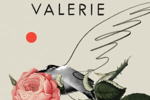'Valerie or, The Faculty of Dreams' by Sara Stridsberg image