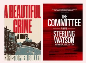 """Find """"Unlikeable"""" Characters & Unlikely Points-of-View in these Multi-layered Crime Novels image"""